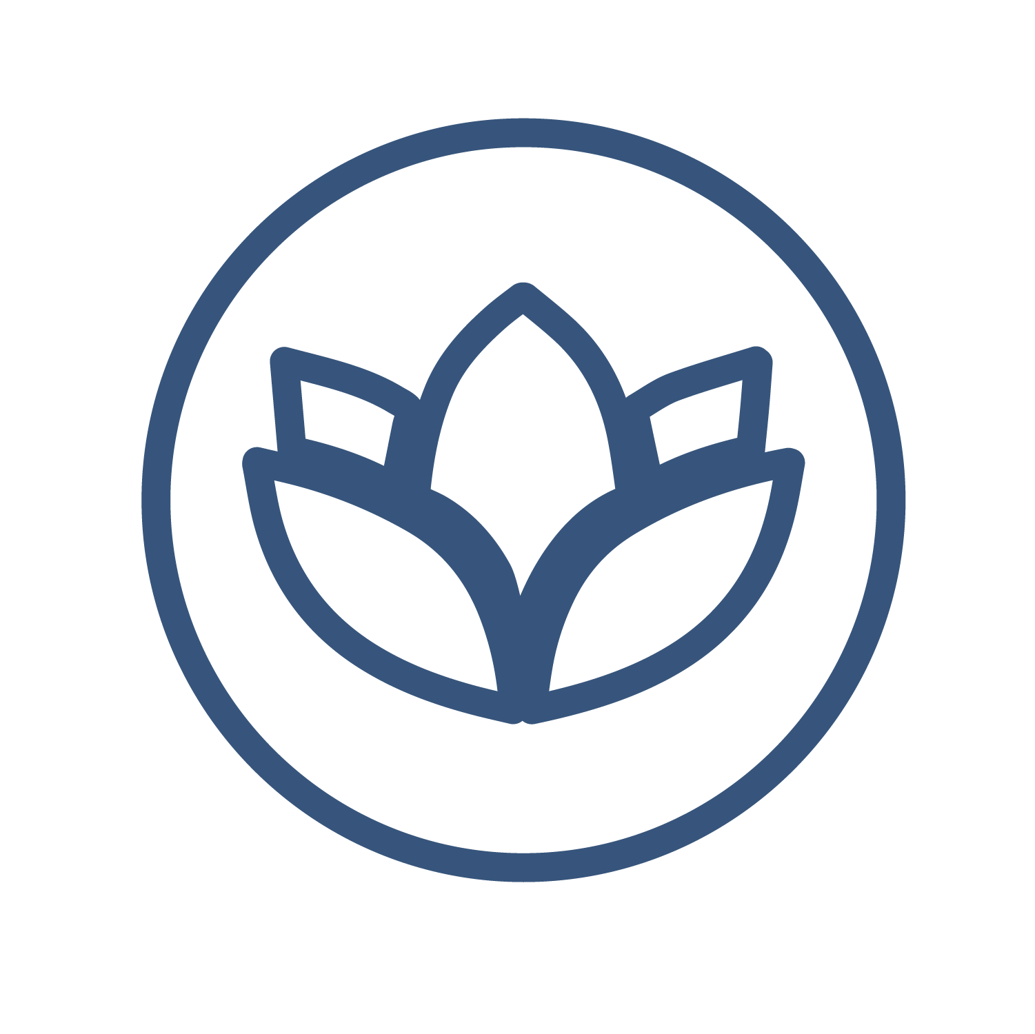 bkwl-service-icons-navy-wellness.png
