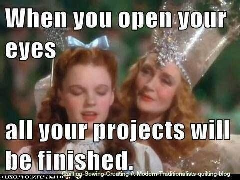 """Meme with Dorothy & the Good Witch from the Wizard of Oz, captioned """"When you open your eyes all your projects will be finished."""""""