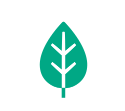 250-T-SHIRT-computer-screen-printing-ICON-eco-friendly-screen-printing-inks-organic-apparel-print-natural-t-shirts-organic-printing.png