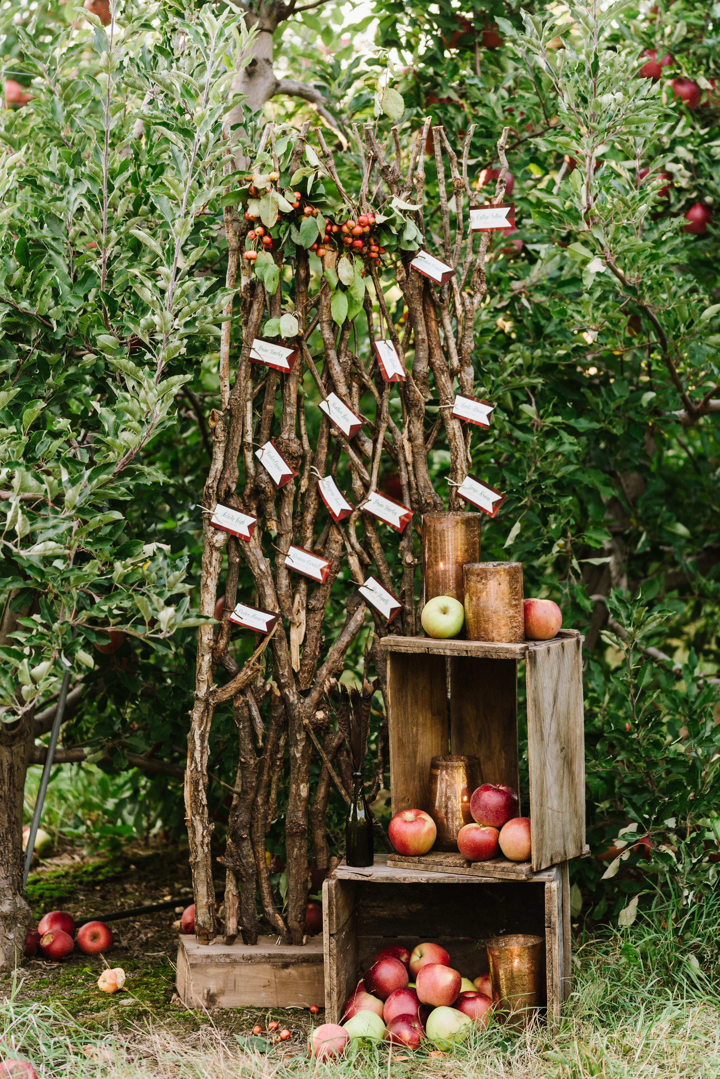 orchard-romance-inspiration-shoot-138.jpg