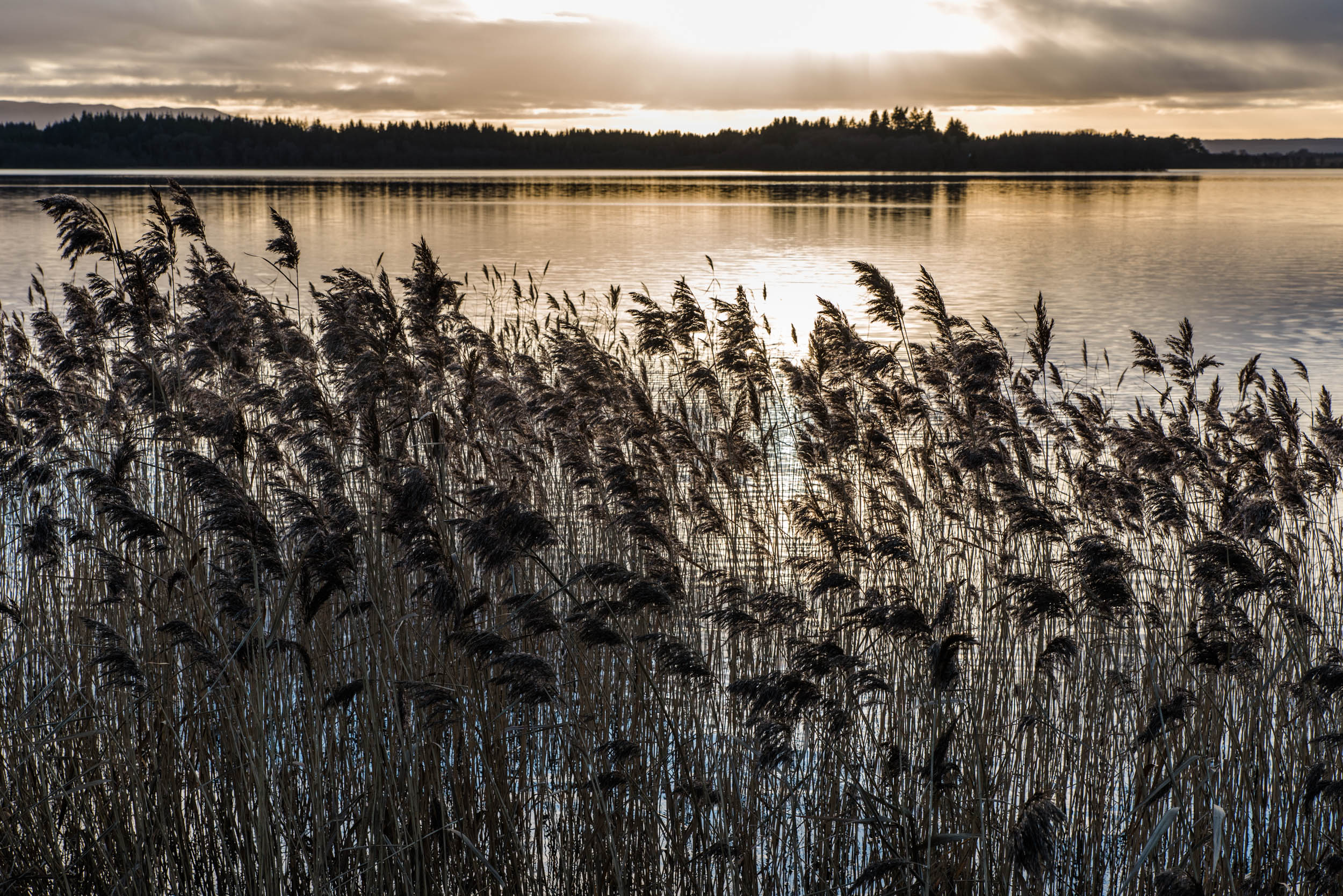 Lake of Menteith, Trossachs