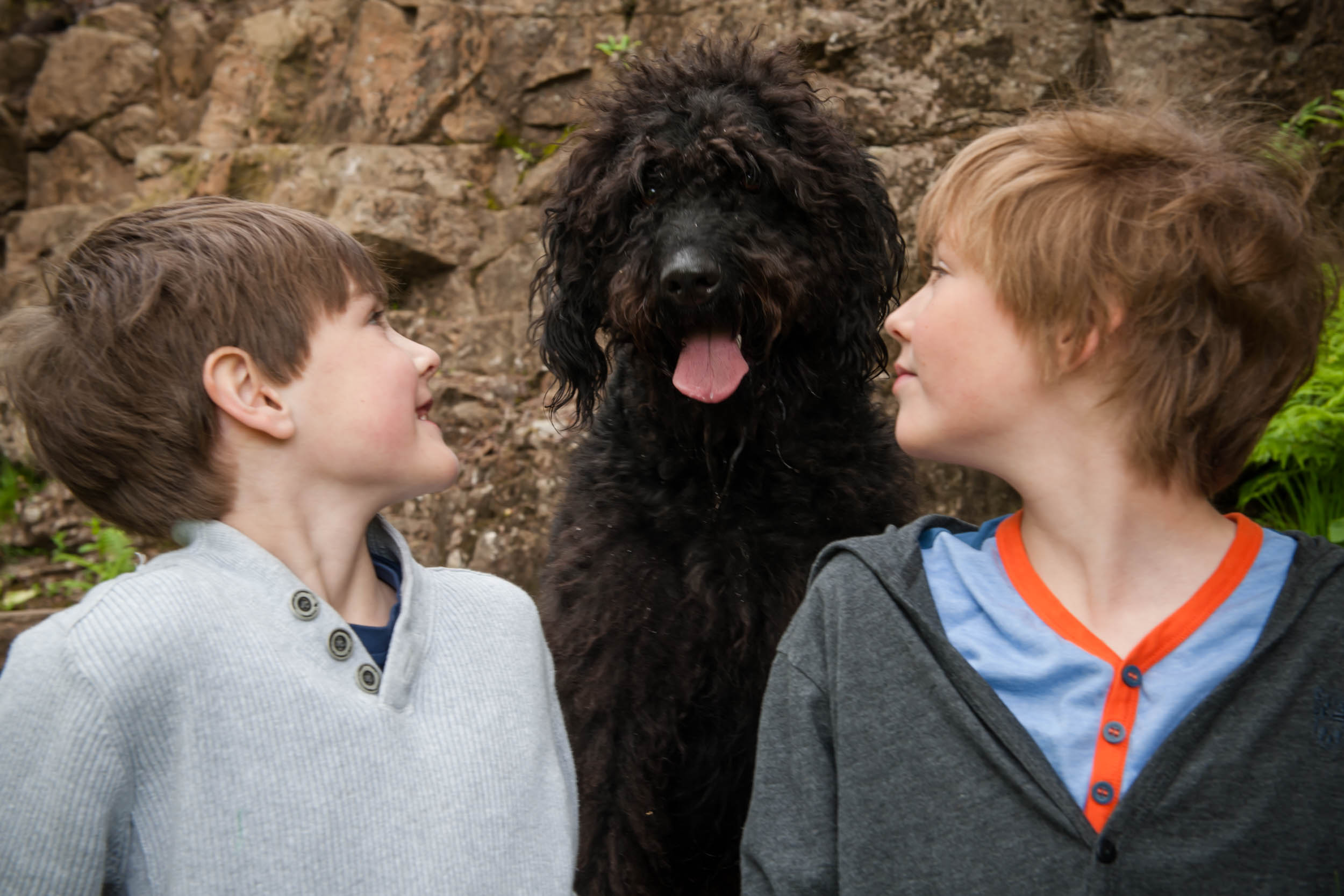 Dogs-3482.jpg