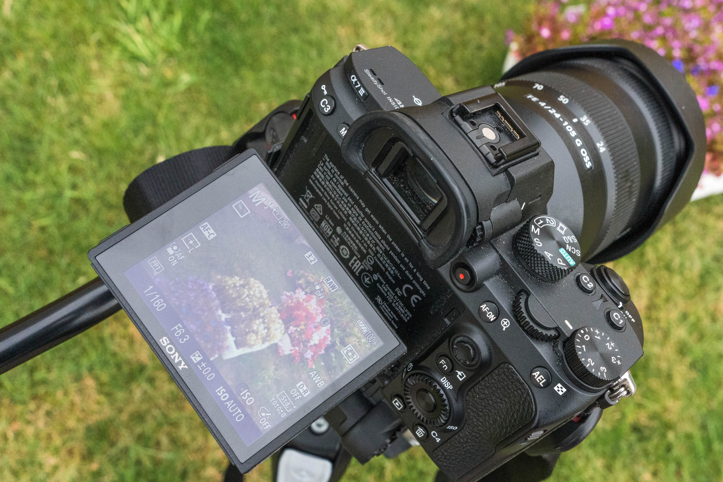 Sony-06977.jpg