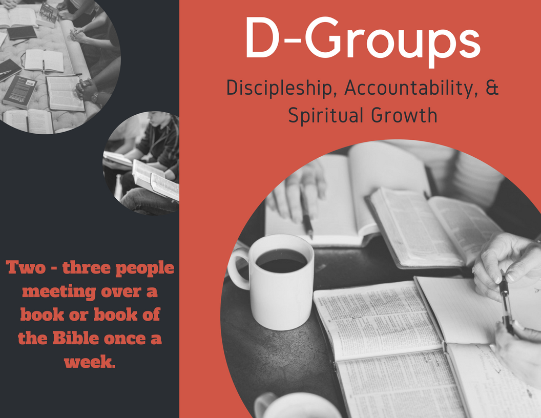 d Groups brochure.png