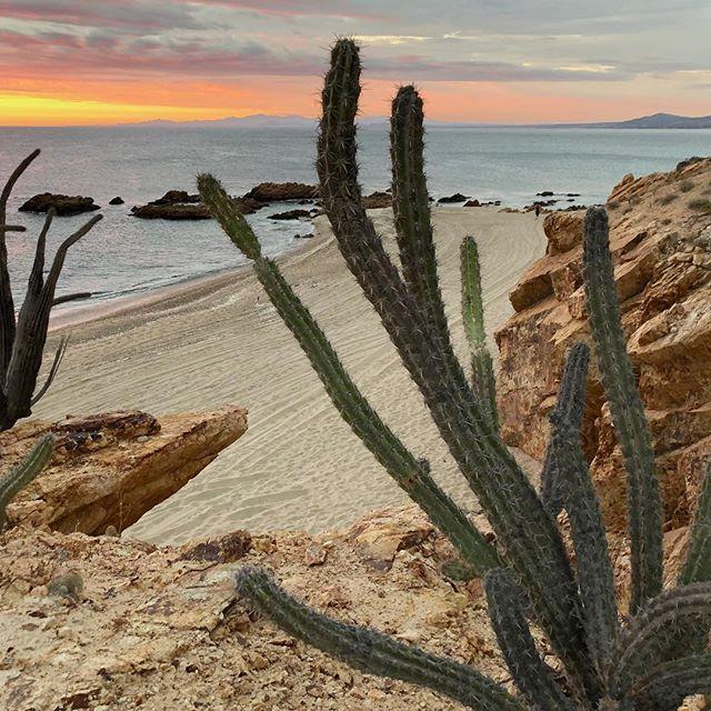 Sea of Cortez, camping on the beach and watching the sunrise. #explorebaja @photoshootbaja @daphnehpugard #beachcamping #seaofcortez