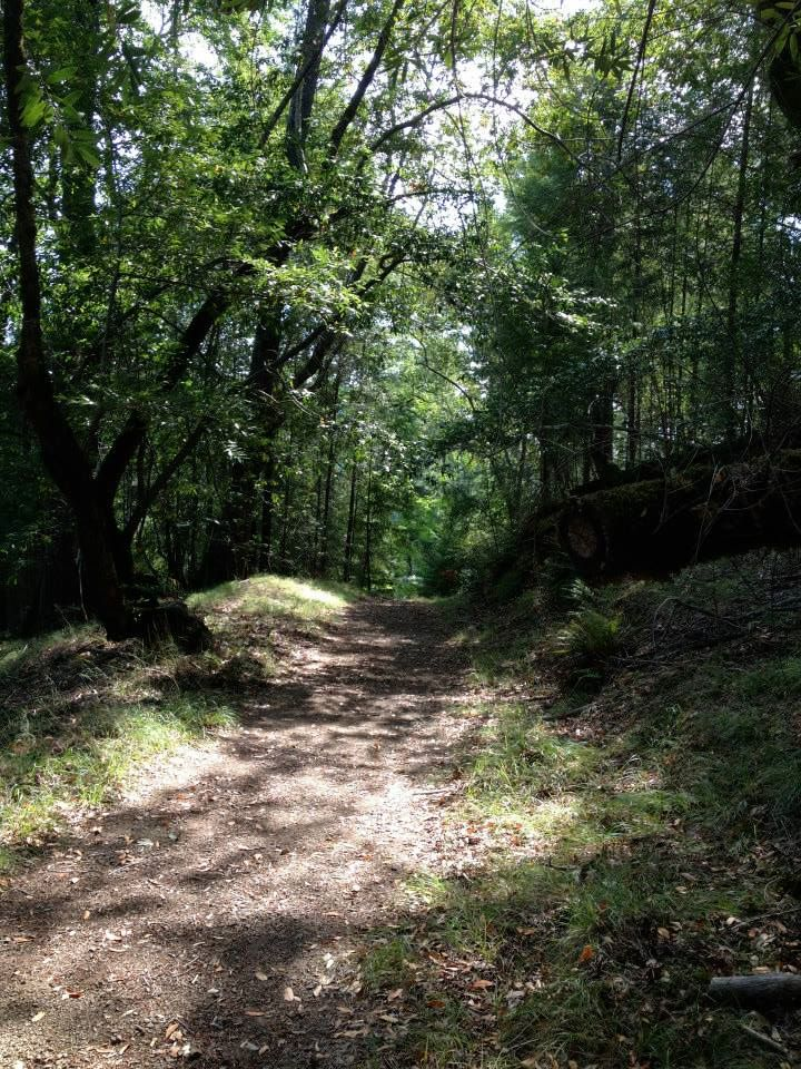 California Russian River Hiking Trails_Camp Cazadero.jpg