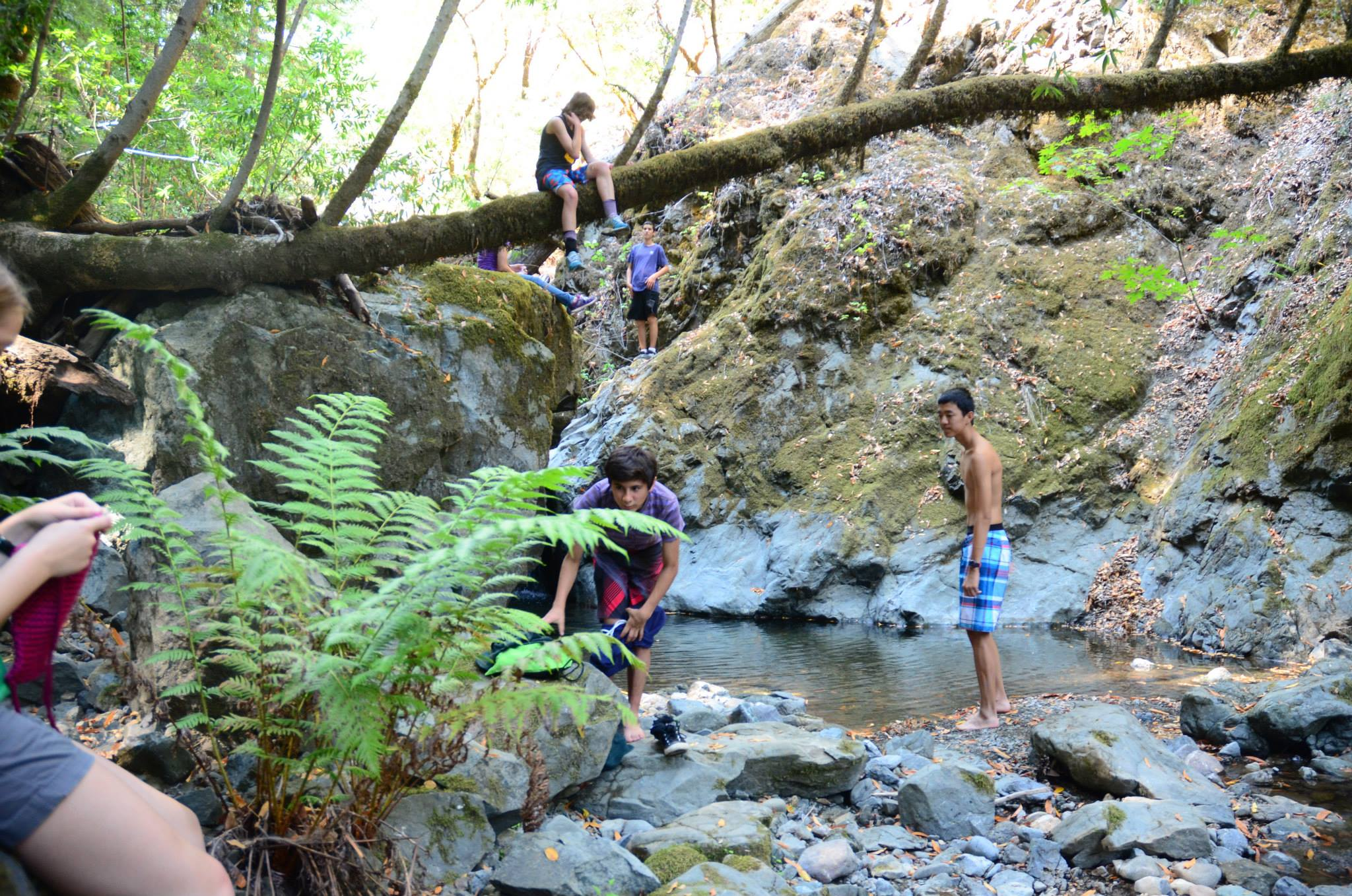 Camp Cazadero Outdoor Retreat in California.jpg