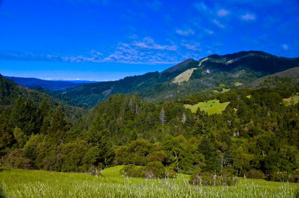 sugarloaf view.jpg