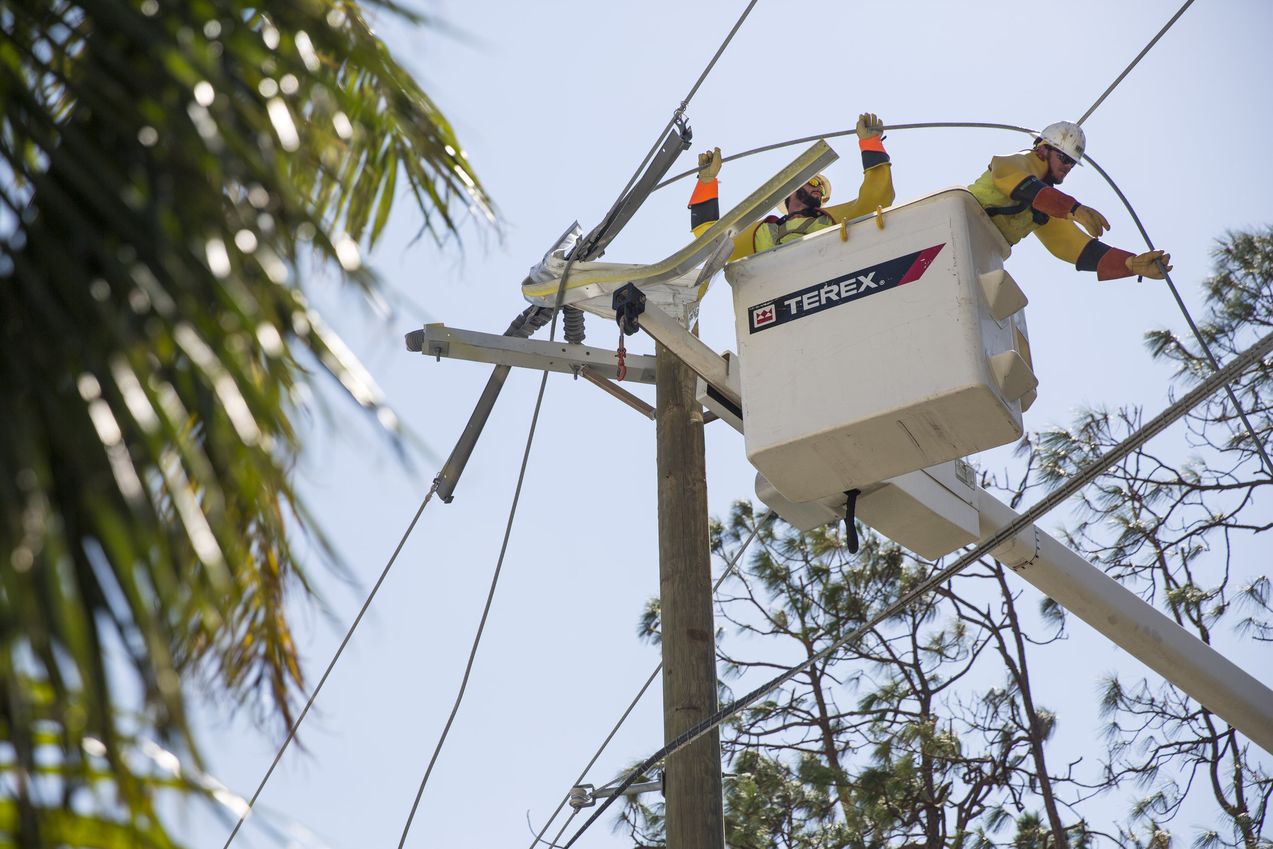 Employees of Irby Construction work to repair power lines in Naples on Monday, September 18, 2017. Roughly 2,300 workers from the company were contracted to assist FPL in restoring power on Florida's west coast.