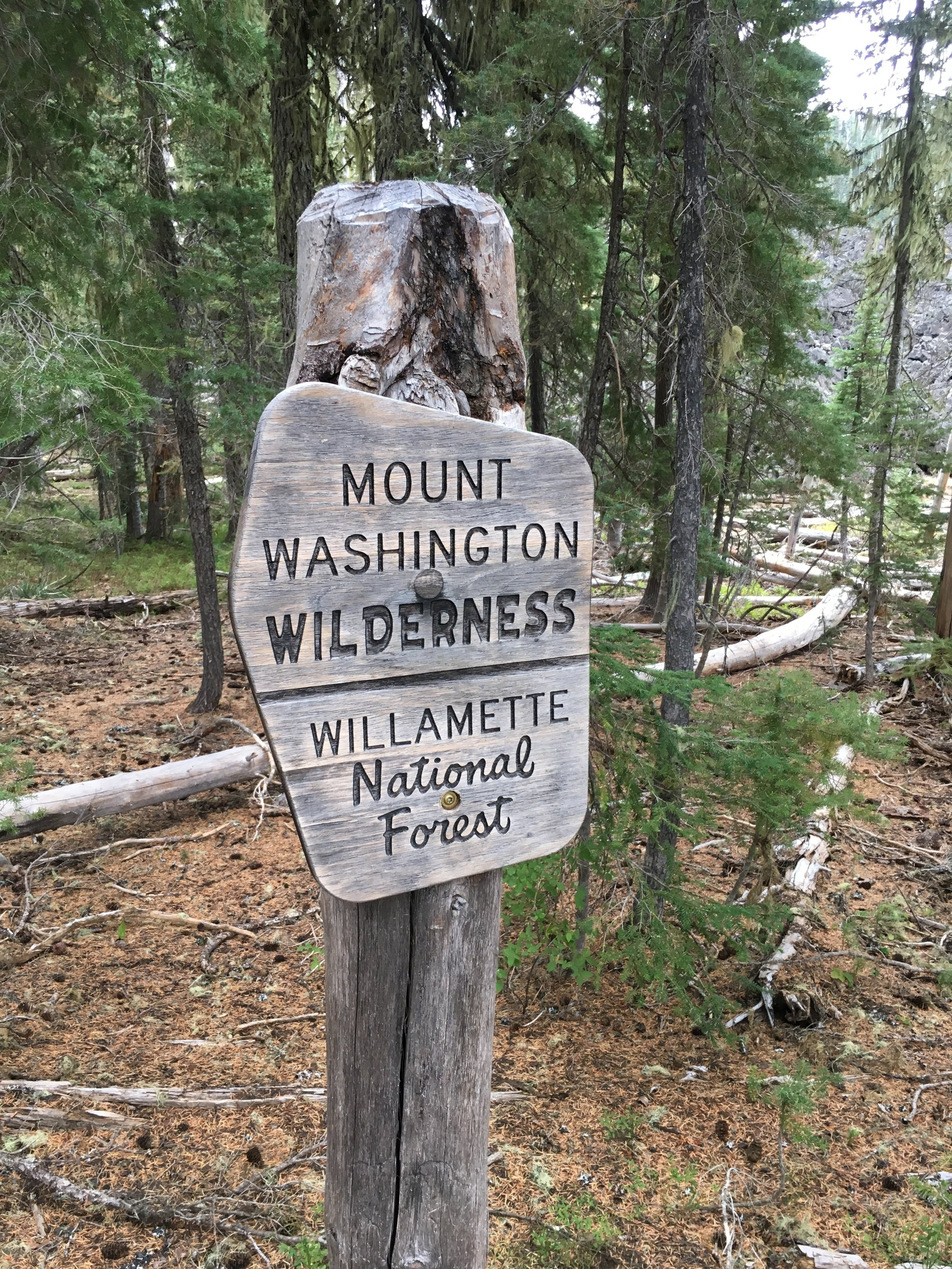 Wilamette national forest hiking pct
