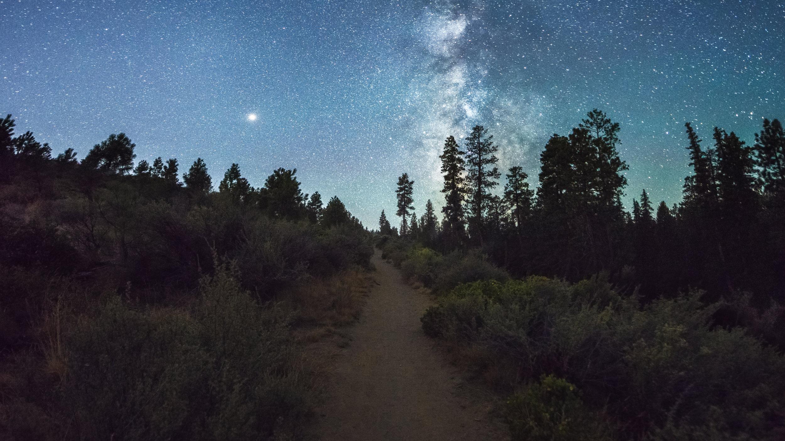 hiking in the dark, night hikes, Trail Stars.jpg