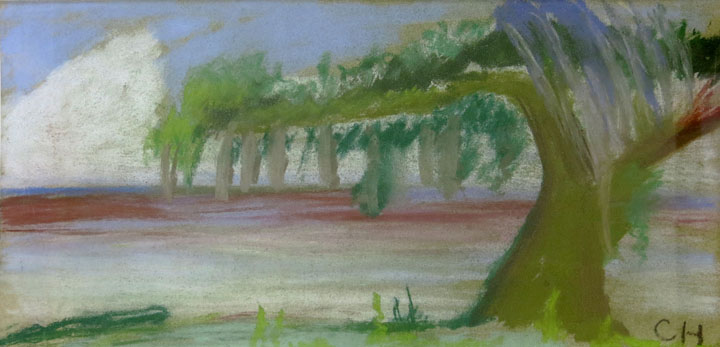Charles W. Hutson, White Oak Spanish Moss at Edge of Gulf, c. 1920, pastel on paper, 6.75h x 13.75w in.