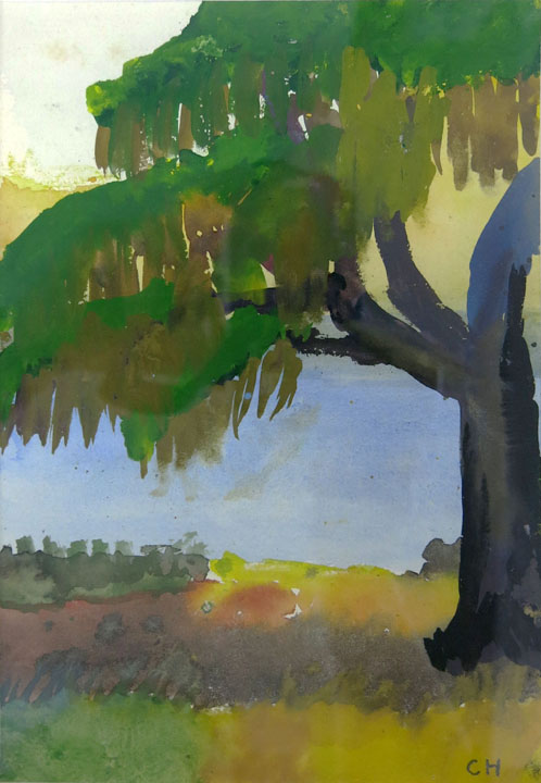 Charles W. Hutson, Oak with Spanish Moss, c. 1920-1930m watercolor on paper, 9h x 6w in.