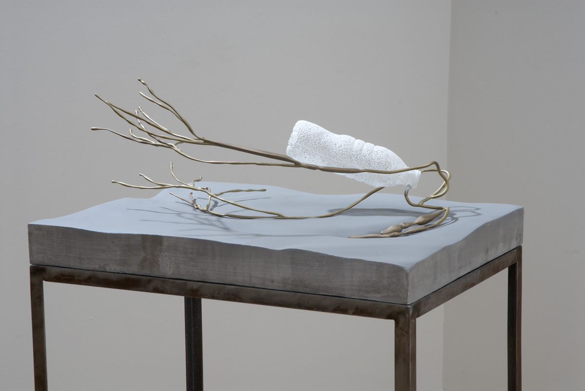Markus Baenziger, Left Behind , 2014, mixed media, 9h x 20w x 15.25d in.