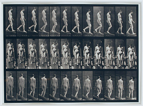 Eadweard Muybridge,  Nude Woman Descending a Ramp , From The Human Figure in Motion Series (1901), Collotype, 20h x 25w in. (framed)