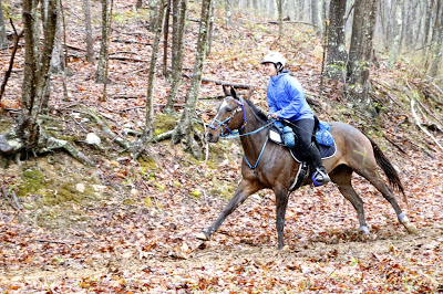At 37 years of age, on my last 50-mile endurance ride.  My mare Tiger Lily and I completed the Old Dominion Triple Crown, which features the three toughest endurance rides on the East Coast, at the 50-mile distance. Some people spend all their lives searching for the perfect endurance partner and thousands of dollars on bloodlines and breeding on the quest for that perfect horse. I successfully completed these three rides on my mutt mare that I bought for $1...on our first attempts at each of these rides. Up until now, endurance riding on this particular mare was my crowning achievement as a rider, equestrian, and athlete.  (Photo by Becky Pearman, used with purchase)