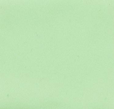 Celery - matte  *NEW*