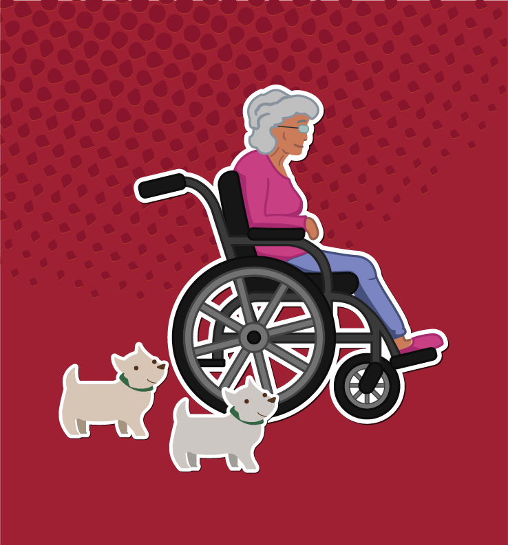 ELDER CARE MEDIATION   —CLICK— FOR MORE INFO & TO WATCH A VIDEO