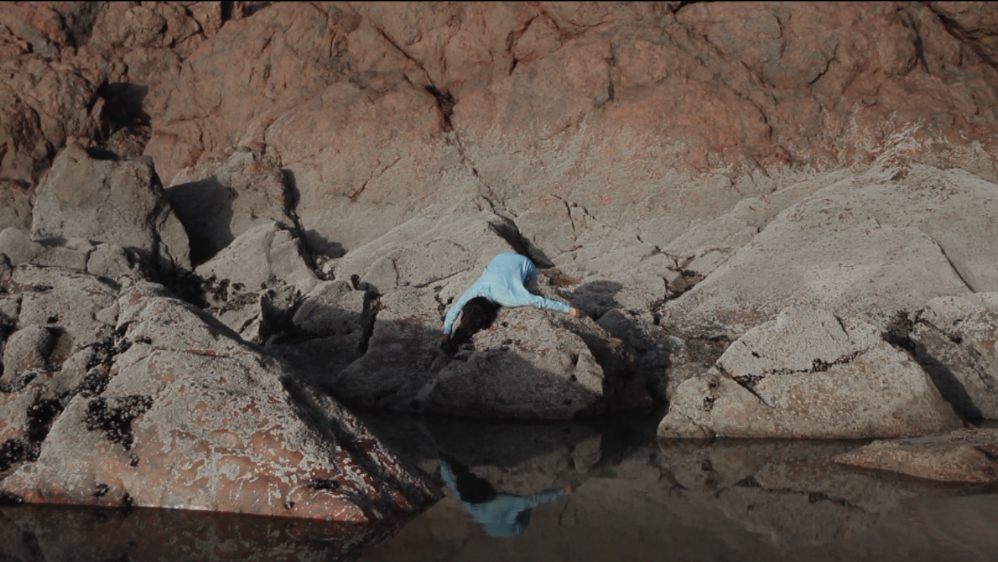 still from TABLEAUX, Paysages premiers