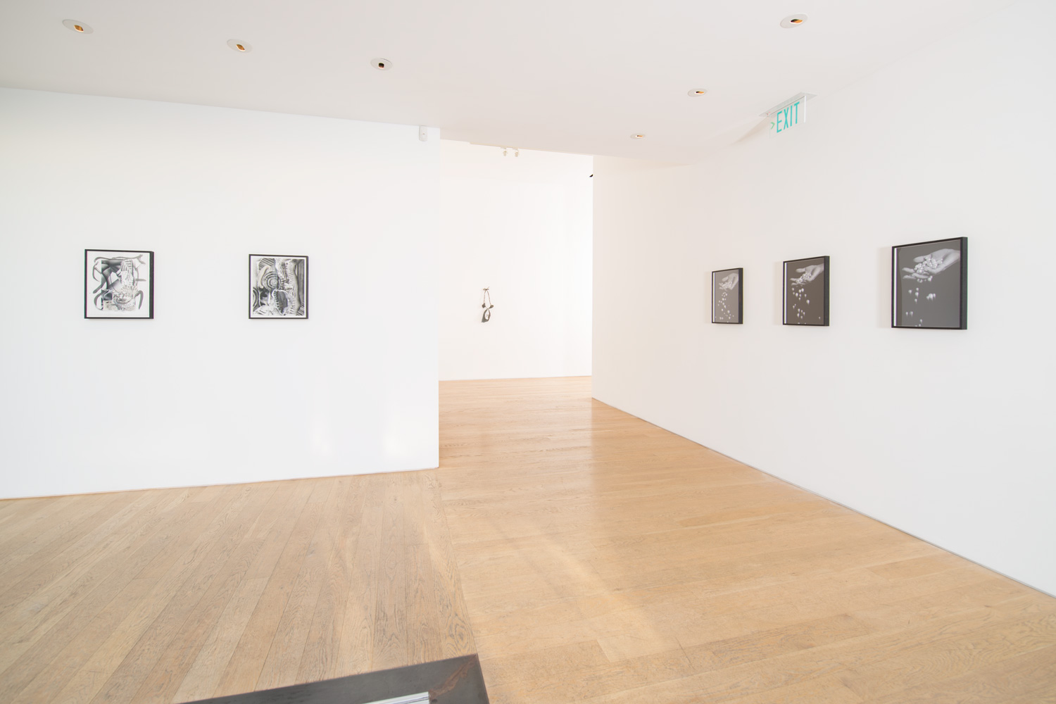 Fay Ray  Part Object  Installation View, 2014