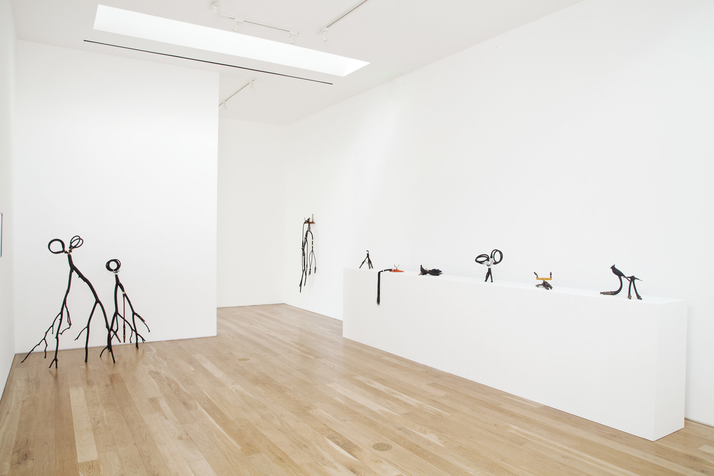 Blue McRight,  Quench , installation view, 2013.