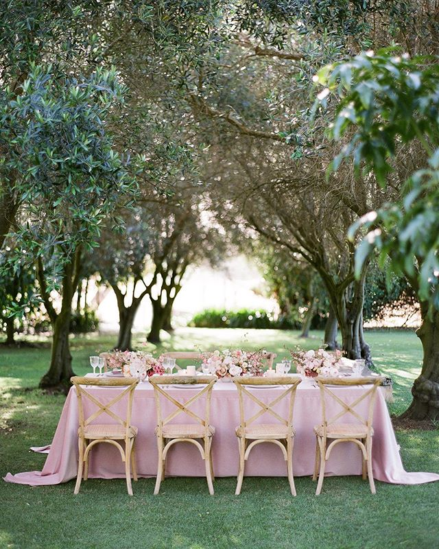 The magic of a garden wedding ✨ _ Photographer @jemmakeech Design & Styling @aravellaeventdesign Venue @treeelle Florist @riverdalefarmalbany & @abbeylouflowersalbany Chairs @hire_in_style_wa Featured on @stylemepretty