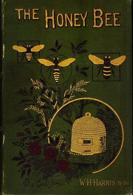 vintage bees and beehives vintage cookbooks 14.jpg
