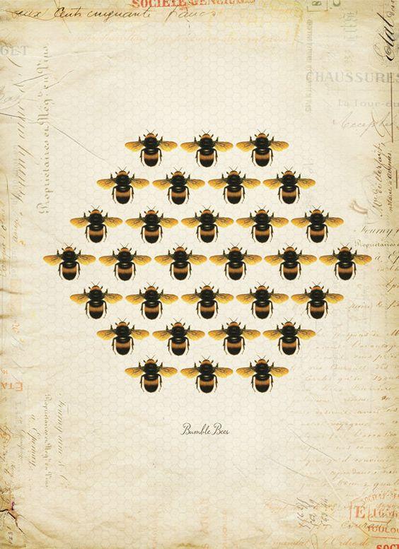 vintage bees and beehives vintage cookbooks 23.jpg