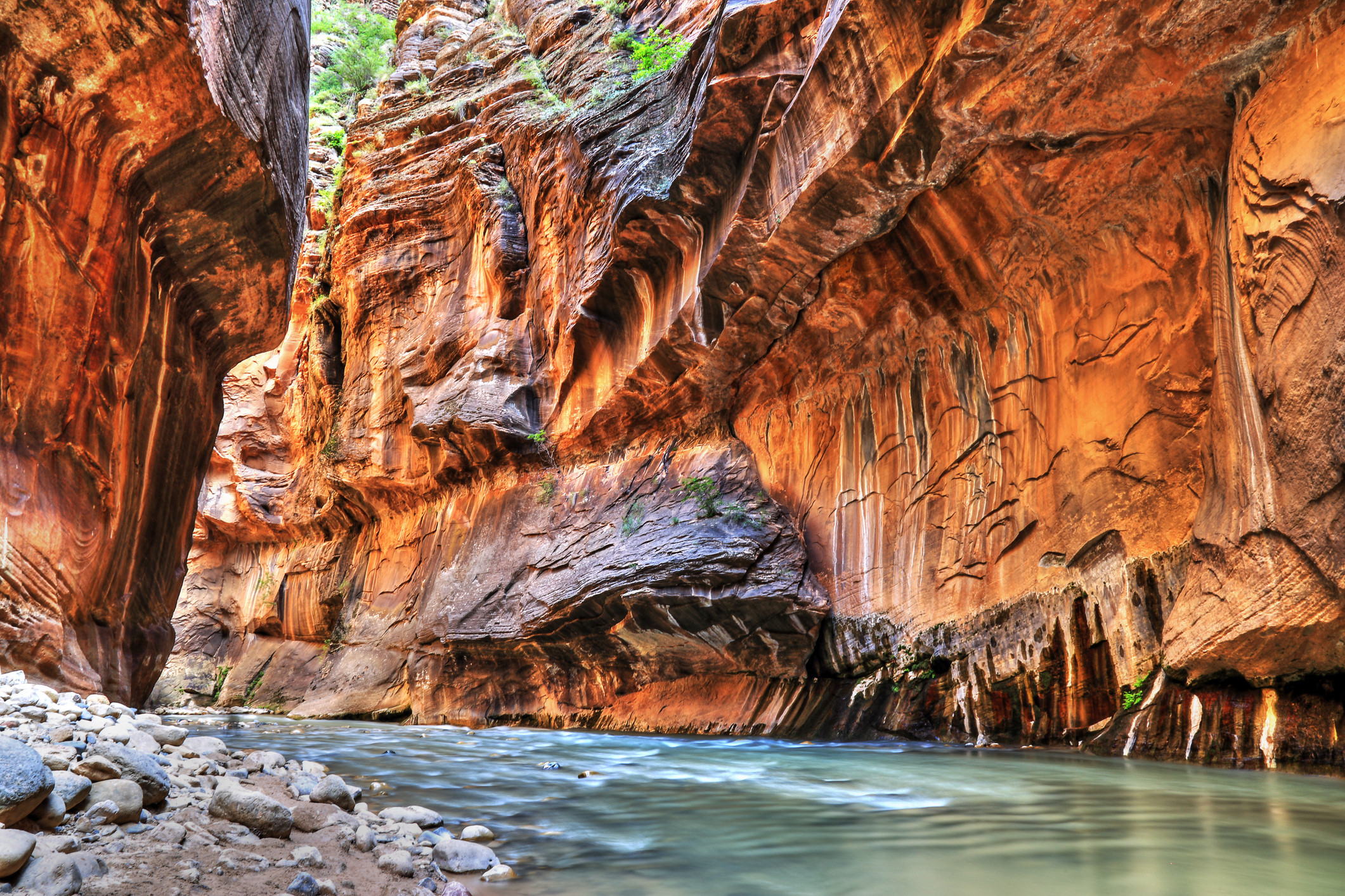 The Narrows, Zion National Park ( Photo credit:  Getty Images)