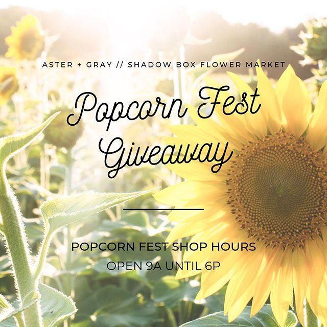 You guys! Have you heard about the new flower shop in town?🌻Our bff Leanne opened up a European-style flower shop just two blocks north of us!🎉 • To celebrate the opening of @shadow.box.floral, Leanne has dropped off 10 gorgeous bouquets to give to YOU! • Beginning at 10a tomorrow (9/7), mention this post when you make your purchase at our shop, and we'll give you a little bouquet of fresh flowers to take home! 🌼 Only 10 bouquets are available, and it's first come, first serve! • Annnnnd, we've dropped off some gifts at @shadow.box.floral for their shoppers! The same guidelines apply! Mention this post at checkout at Shadow Box, and you'll receive a free gift from us 💕 See you tomorrow!