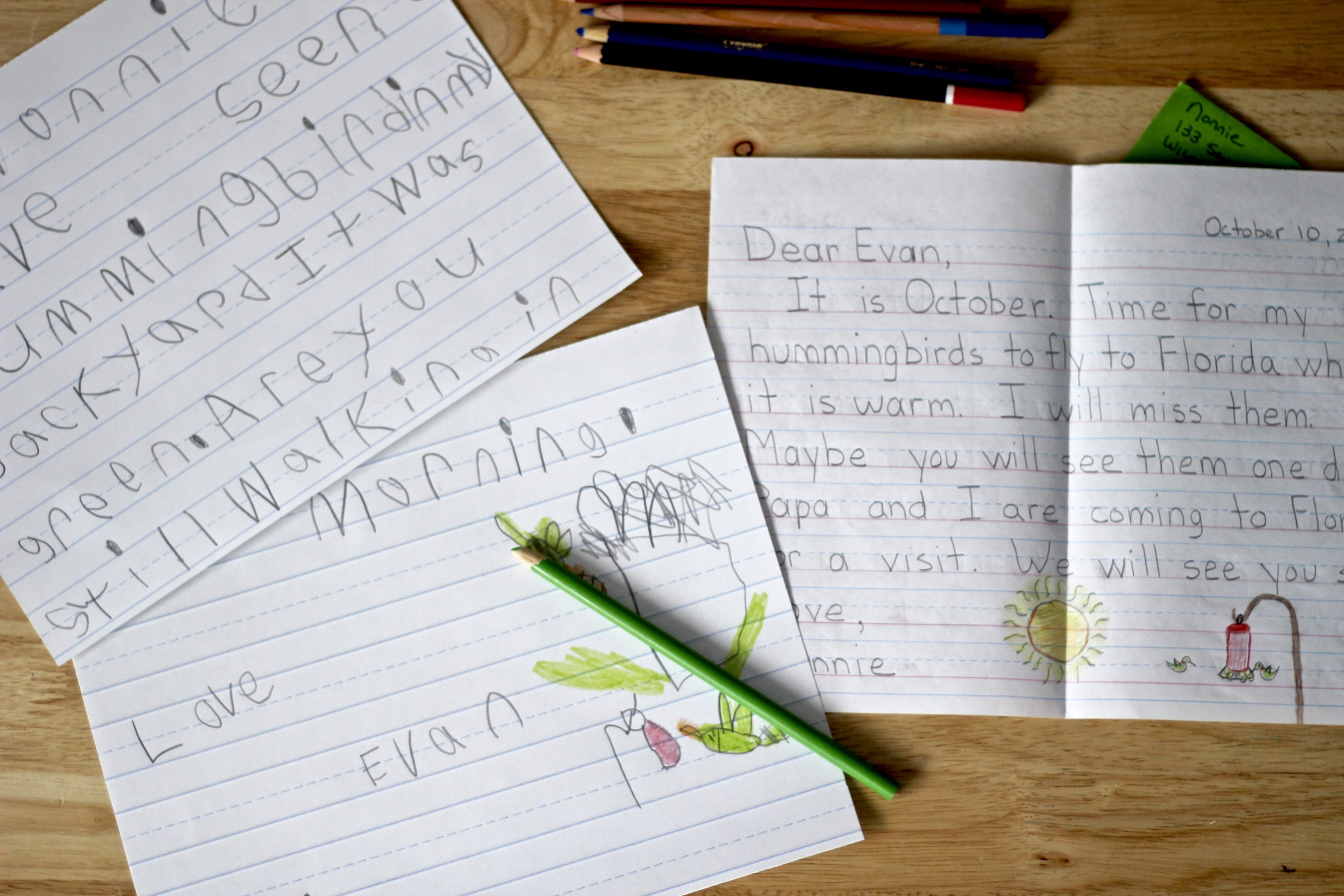 homeschool activities