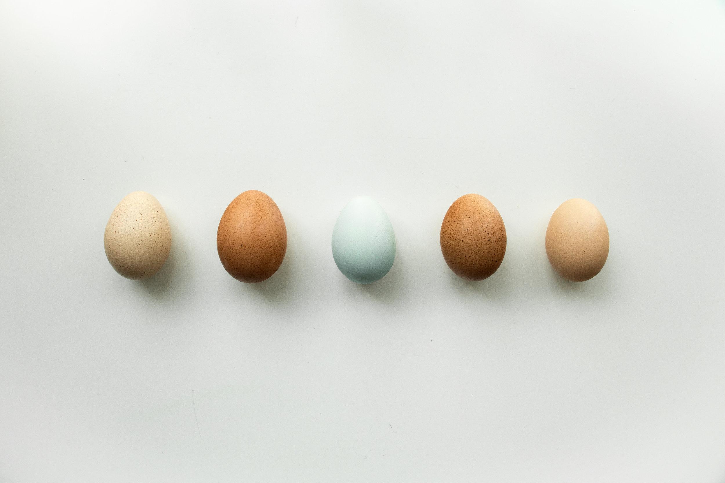 Composite Egg_1.jpg