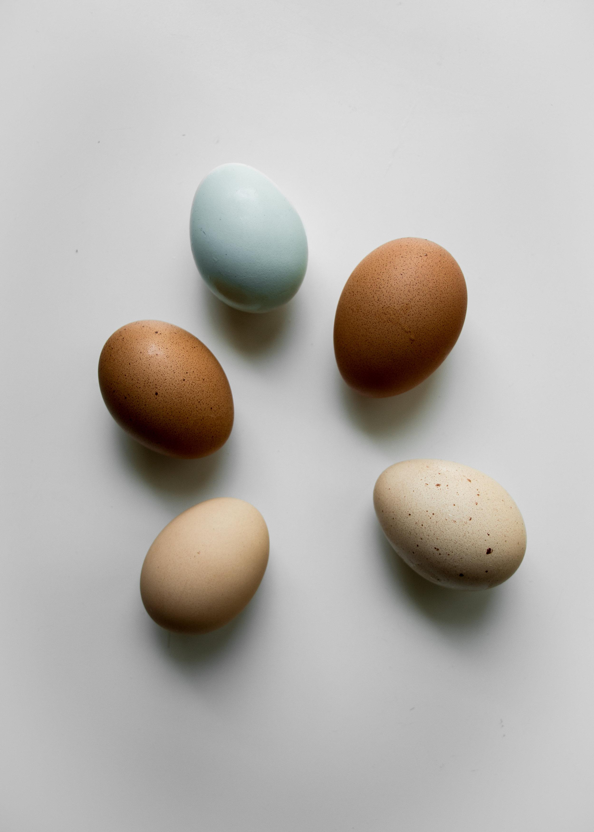 Composite Egg_3.jpg