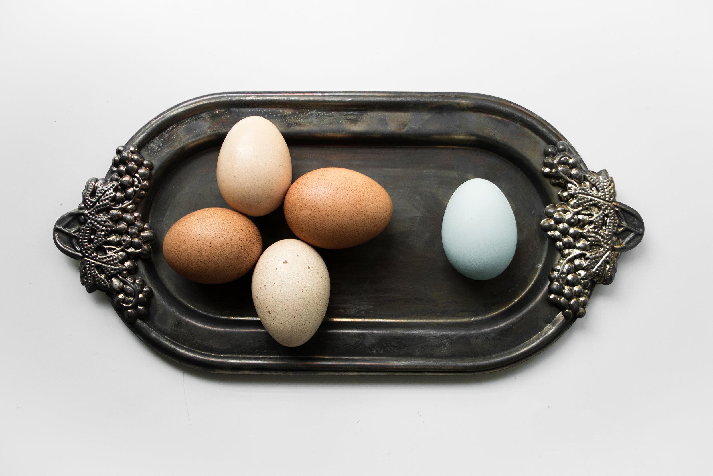 Composite Egg_5.jpg