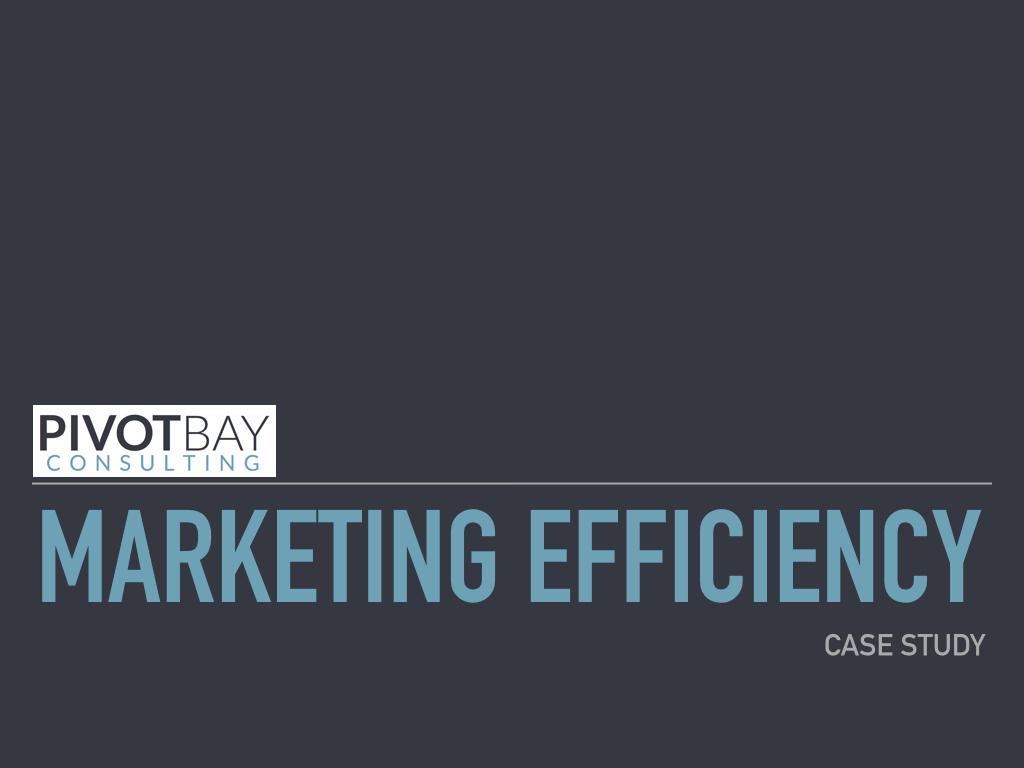 Marketing Efficiency 2.0.001.jpeg