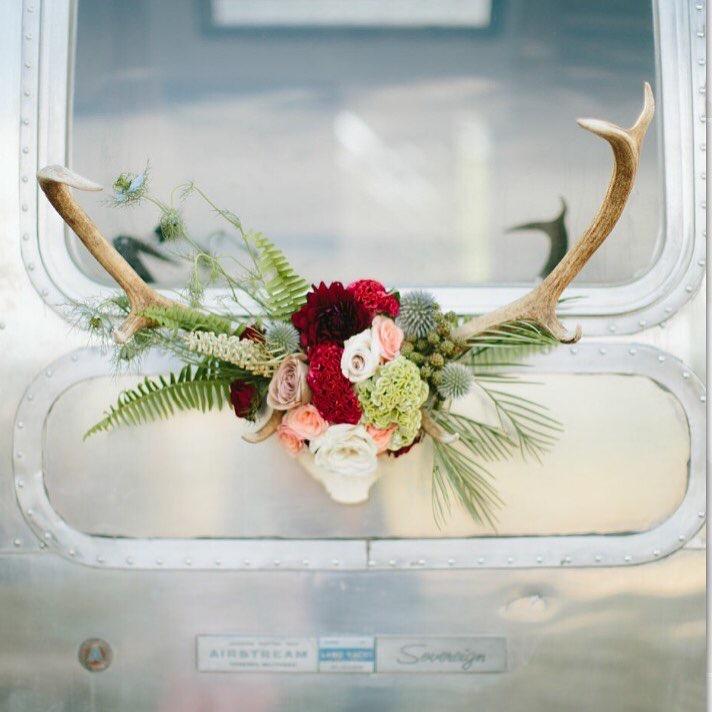 Ember Flowers and Horns.jpg