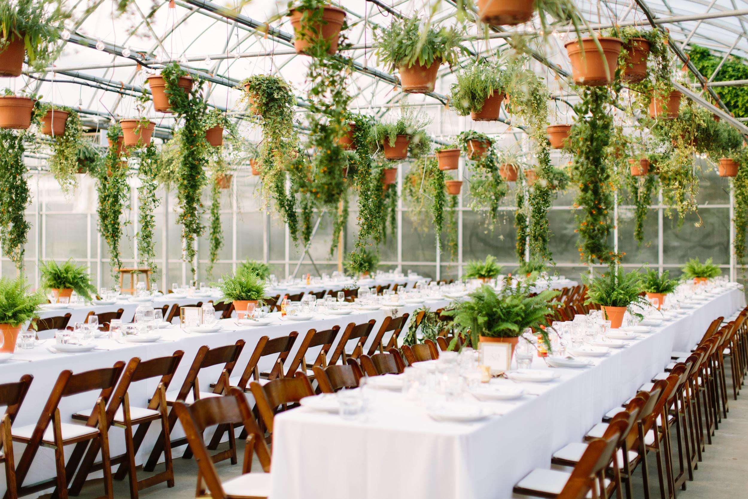 Saskatoon_Farm_Greenhouse_Wedding0045.jpg