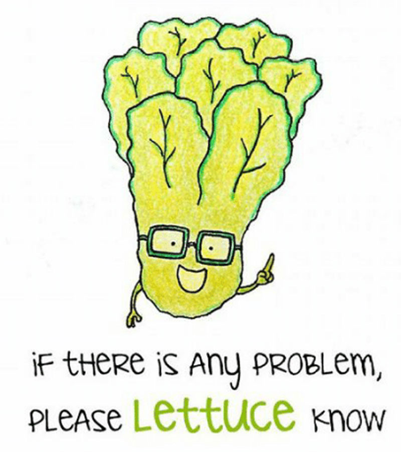 if-there-is-any-problem-please-lettuce-know.jpg