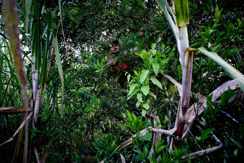 08_007_AgroEcology_MijailVallejo_mishavallejo@gmailcom.JPG