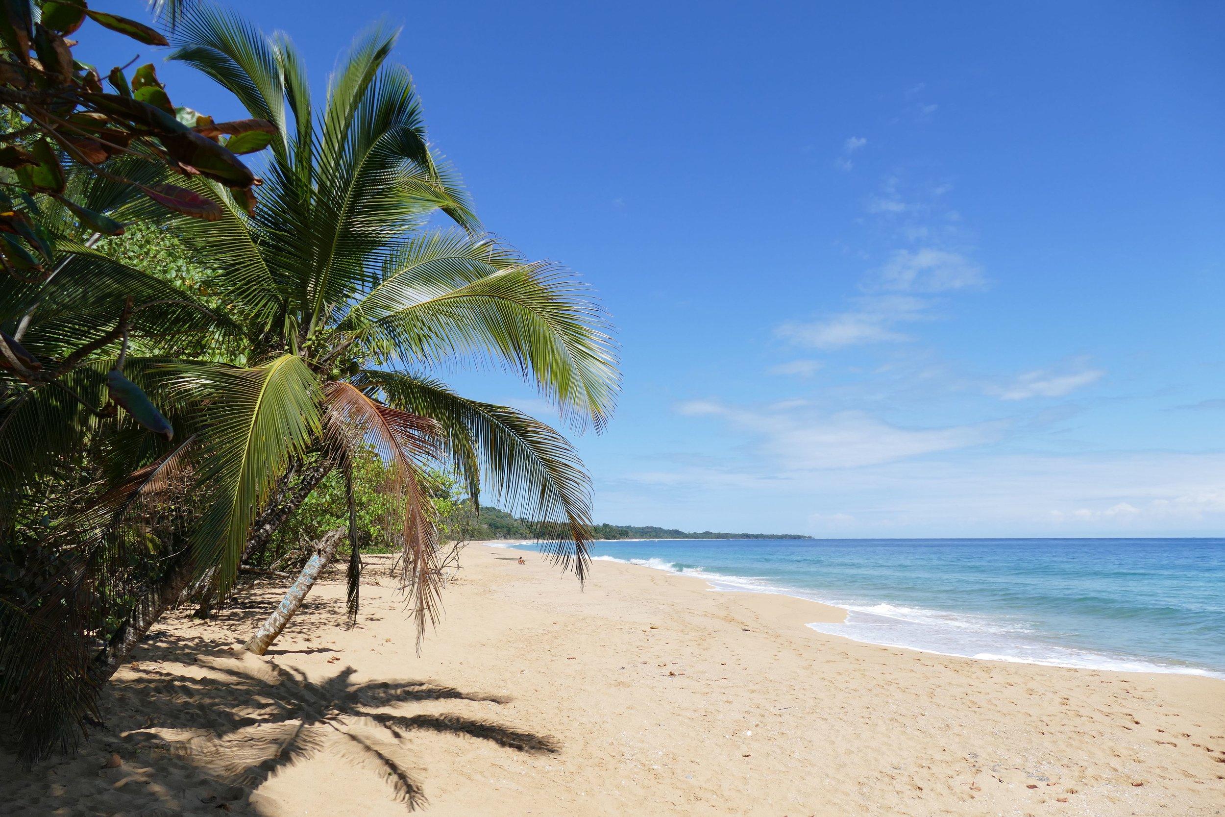Playa Bluff, Bocas del Toro - Crédit Photo : Anaïs Papaï