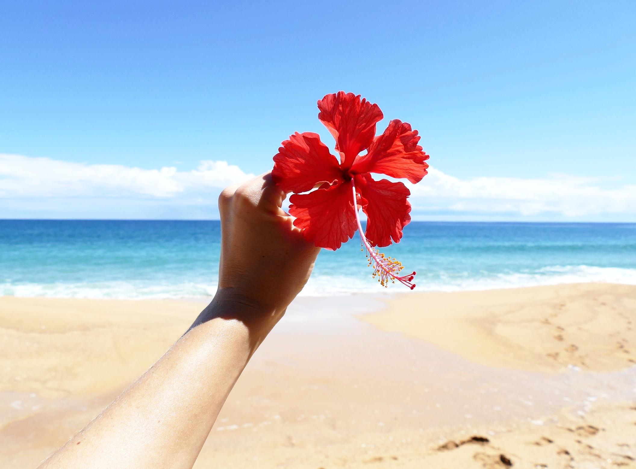 Hibiscus Love - Playa Bluff, Bocas del Toro