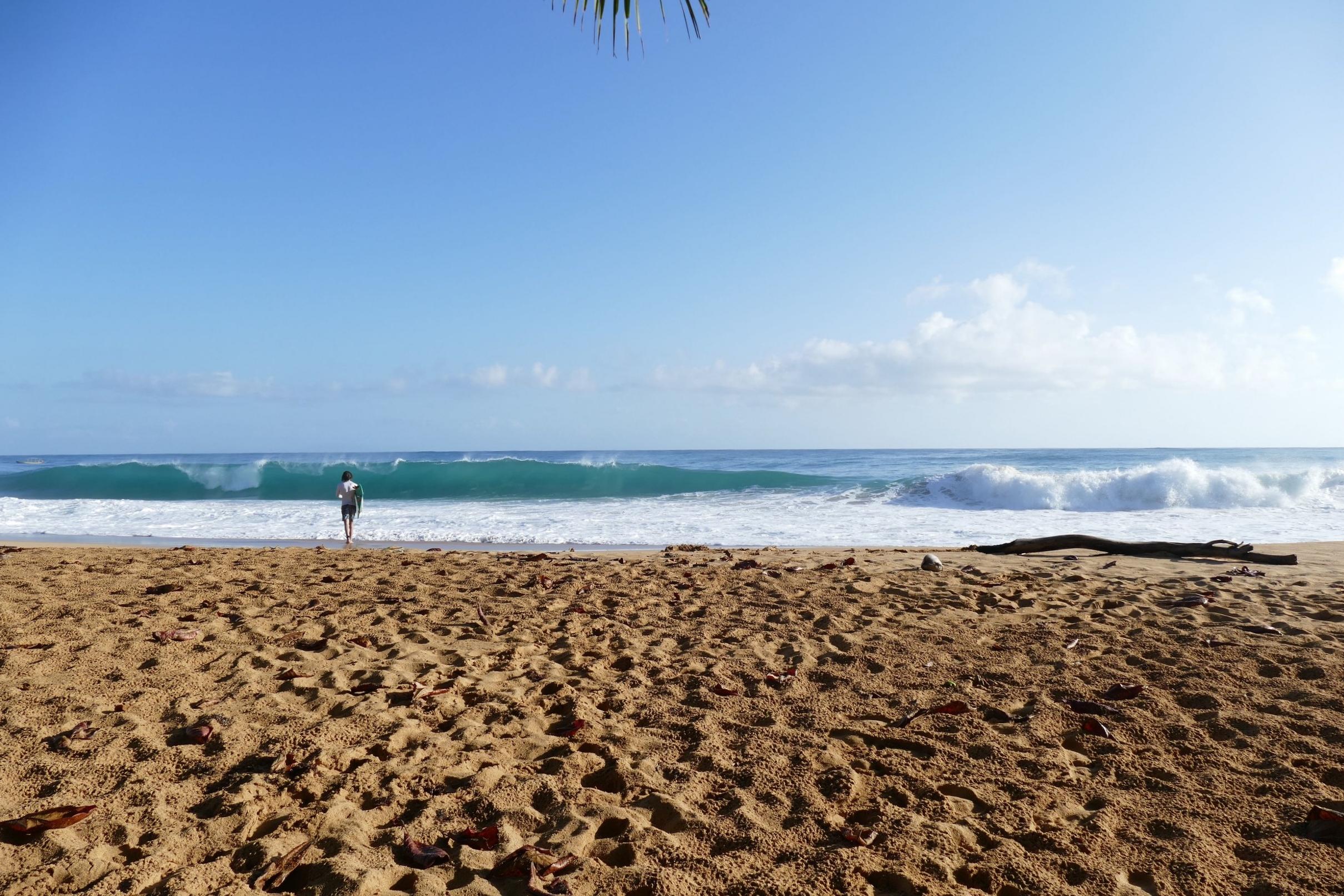 Morning at Playa Bluff, Bocas del Toro