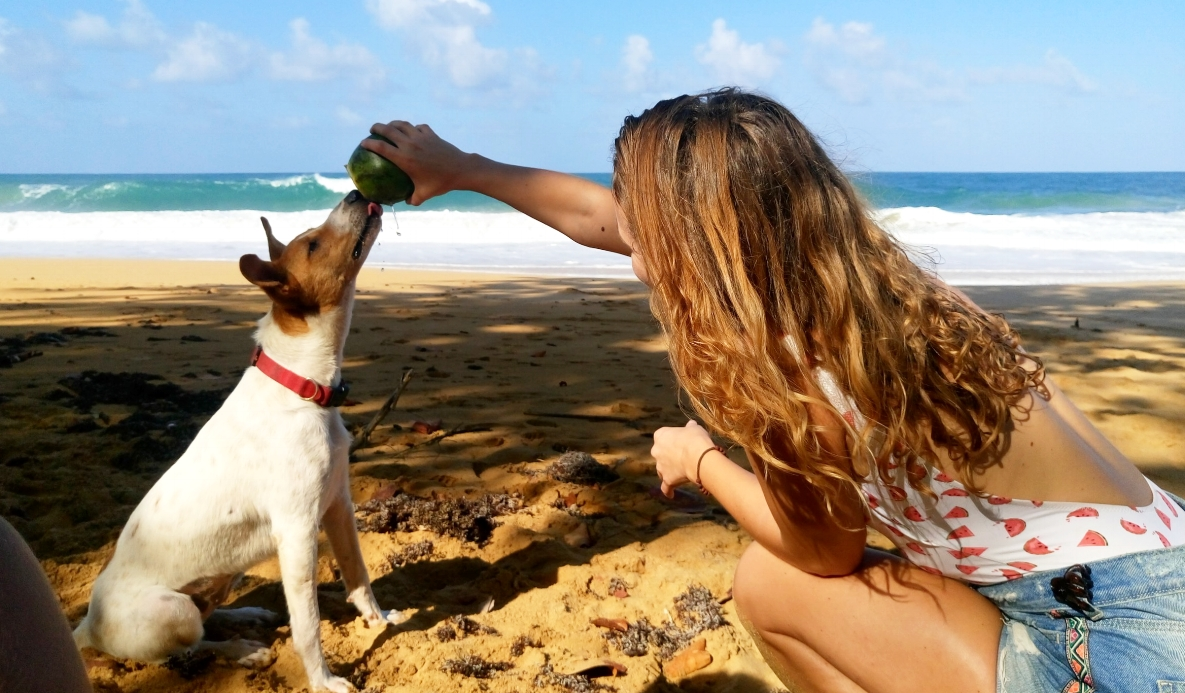 Beachy Lifestyle - Bluff Beach, Panama