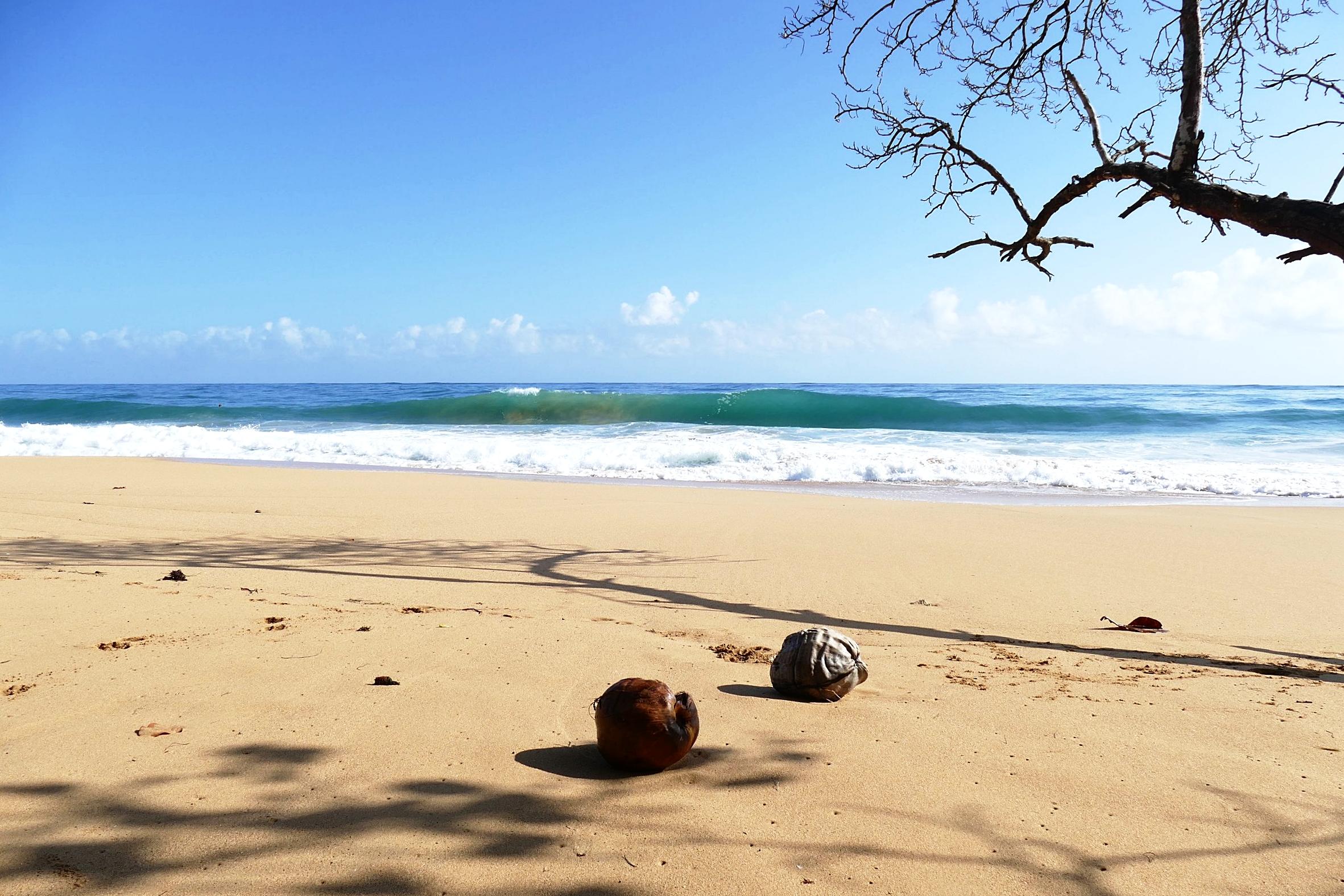 Playa Bluff, Isla Colon, Bocas del Toro