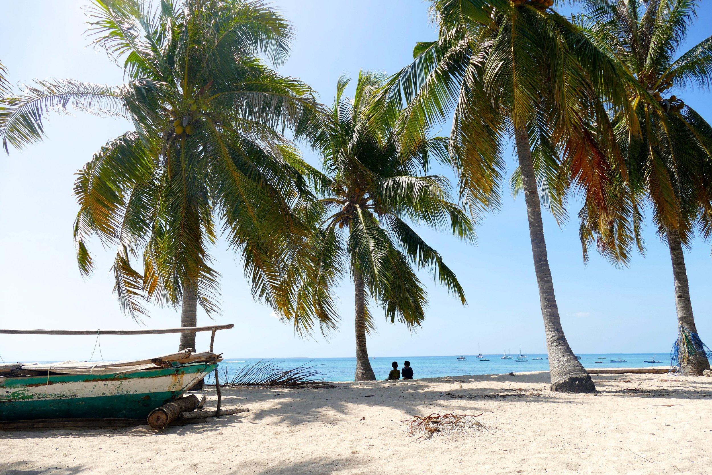 Confessions sous cocotiers - Instant de vie sur Rote Island, Indonésie