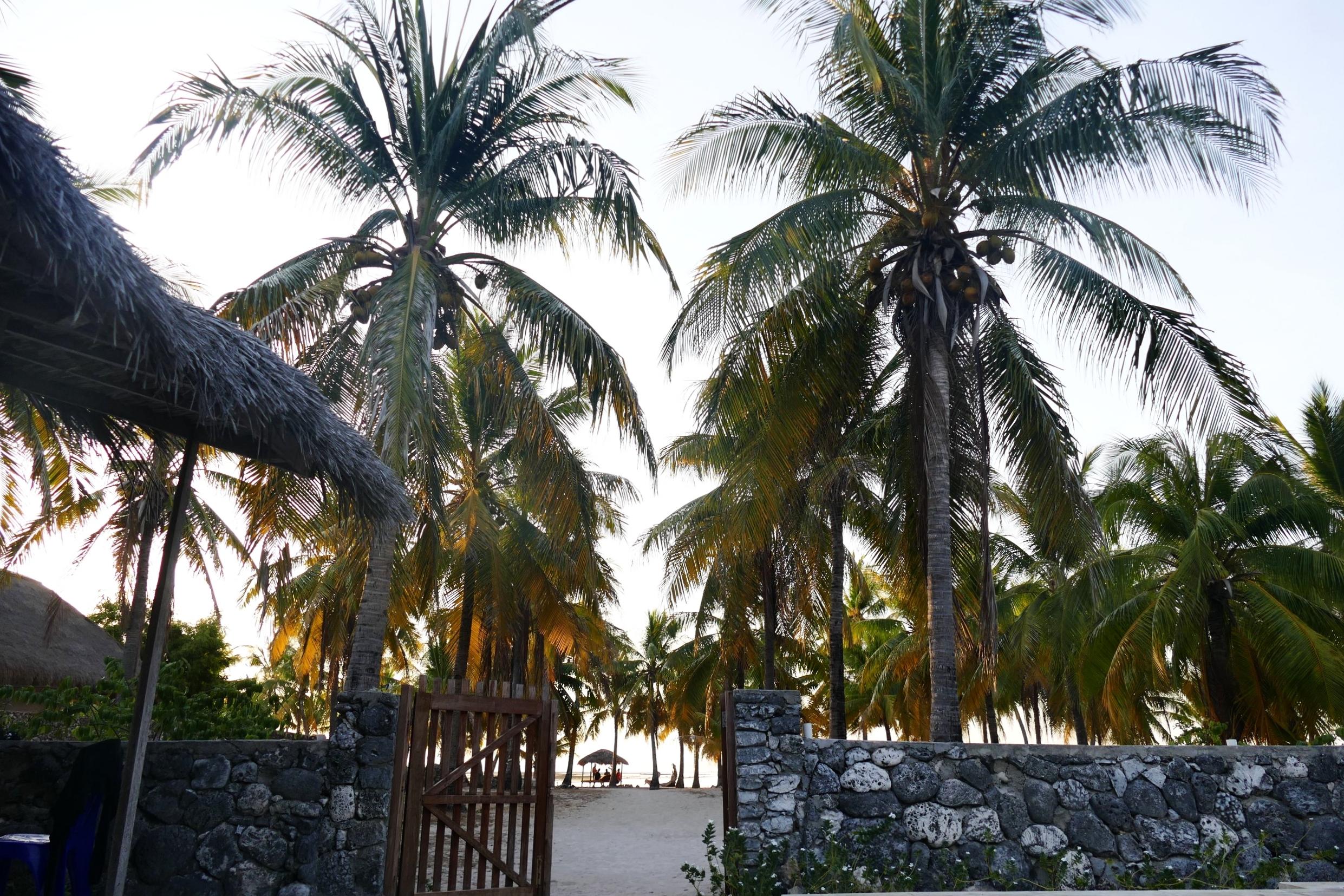 Rote Island Indonesia (62).jpg