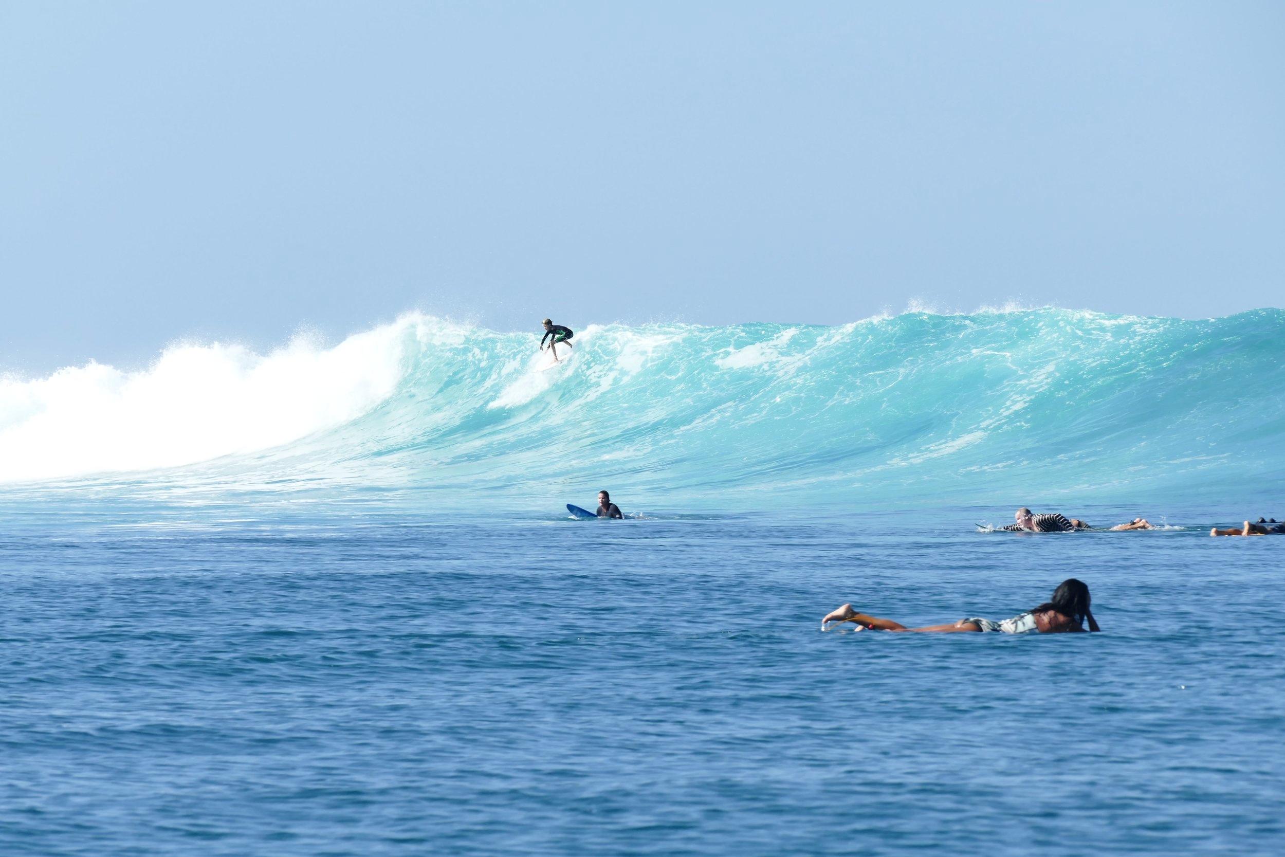 Rote Island Indonesia (52).jpg