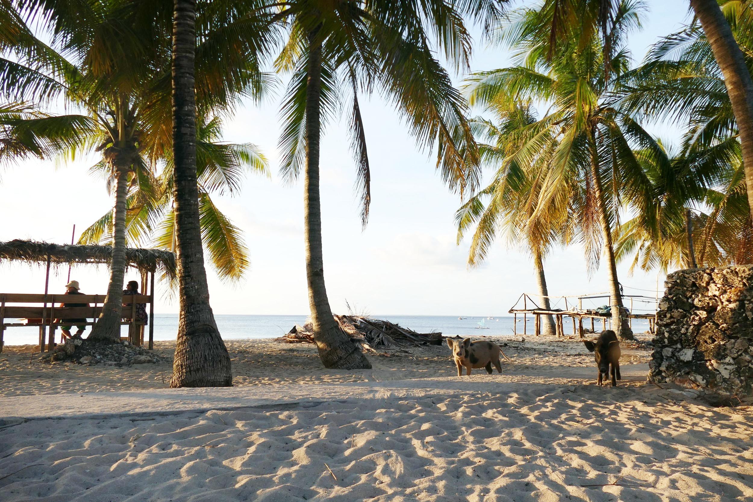 Rote Island Indonesia (1).jpg
