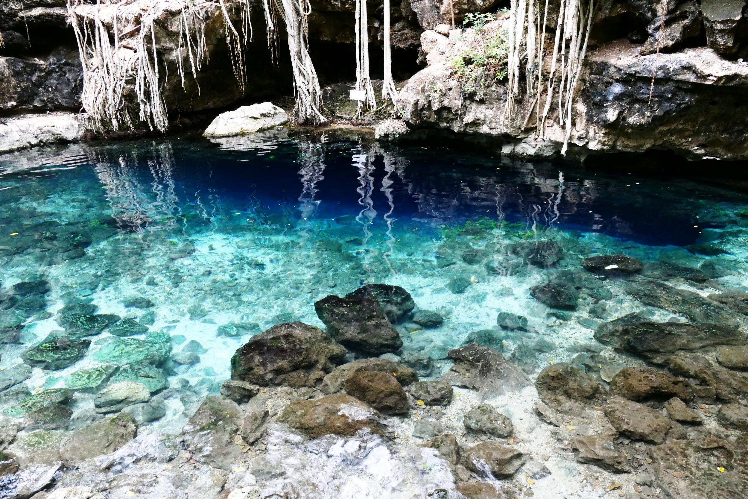 Cenote Xbatun Mexico (23).JPG