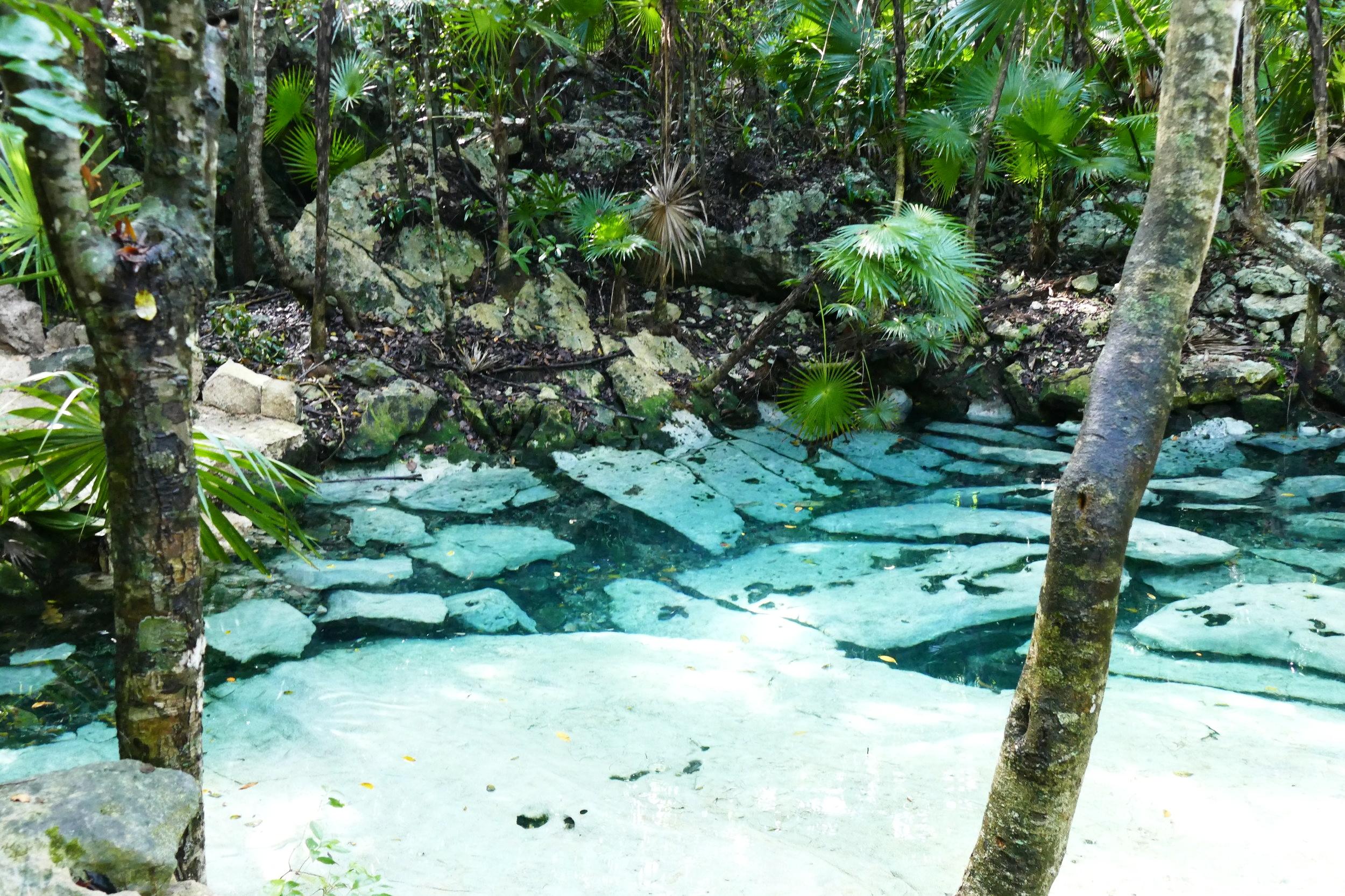 Cenote Azul - Quintana Roo, Mexique